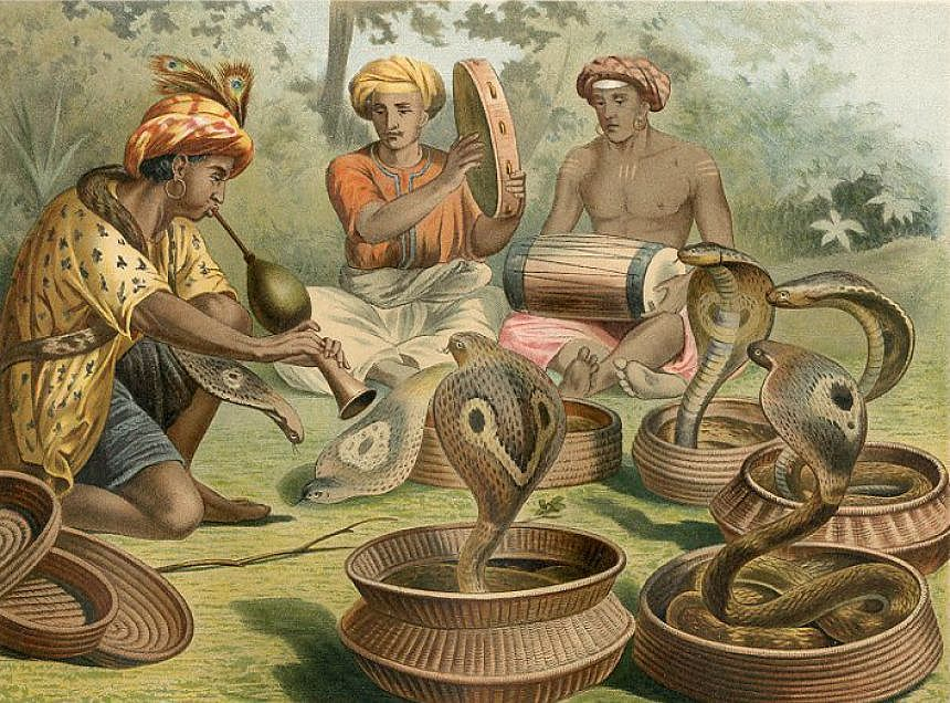 """- """"Snakecharmers,"""" a chromolithograph by Alfred Brehm, c.1883"""